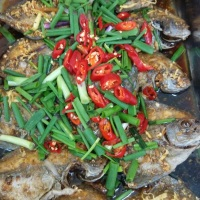 seafood-dishes-food-variety-4